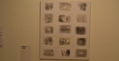 Llapis sobre paper. Vàries peces de 105 x 87 cms. 2013.